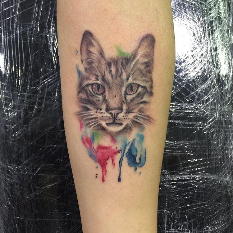 Signification et histoire des tatouages de chats
