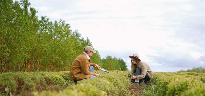 Quels sont les signes les plus compatibles avec le Poissons?
